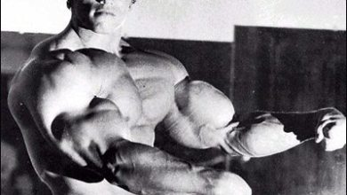 Photo of Schwarzenegger Dedicates Museum to Himself: The Governator
