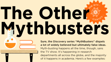 Photo of Real Myths…Busted [infographic]