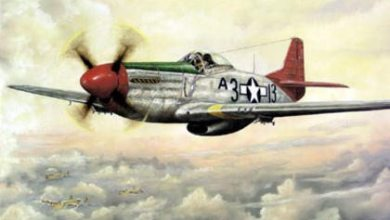 Photo of Red Tails