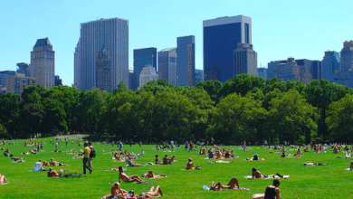 Photo of The World's Top City Parks