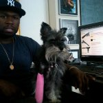 Top Five Famous Pets on Twitter 3