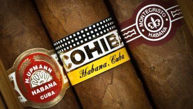 Photo of Cigar Choices
