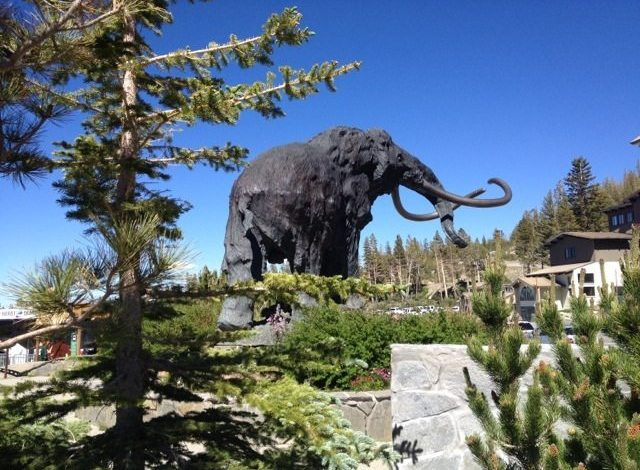 Photo of 10 Things To Do In Mammoth During The Summer