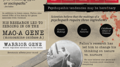 Photo of The Brain of a Serial Killer [Infographic]