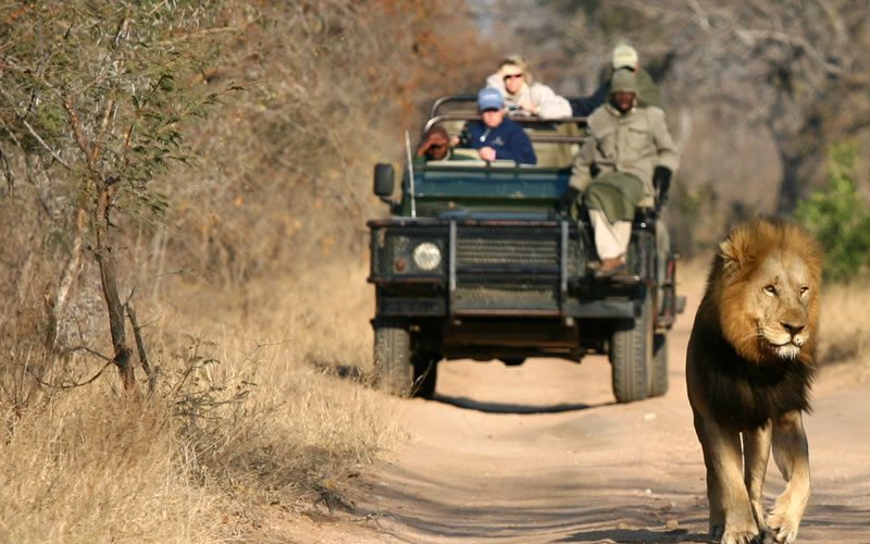 5 Things to Enjoy When Traveling in Africa 1