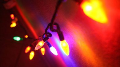 Photo of Battle of the Bulb: LED vs. Incandescent Christmas Lights