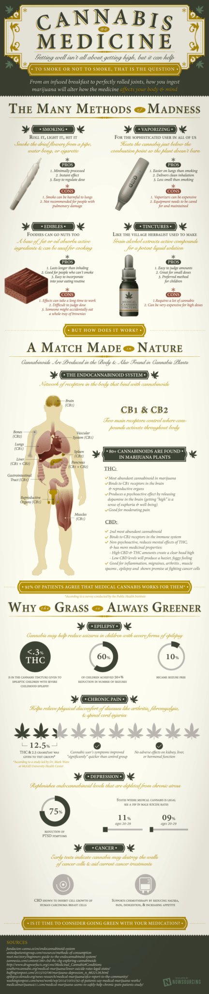 Cannabis-Medicine-Infographic