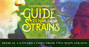 marijuanastrains-snip