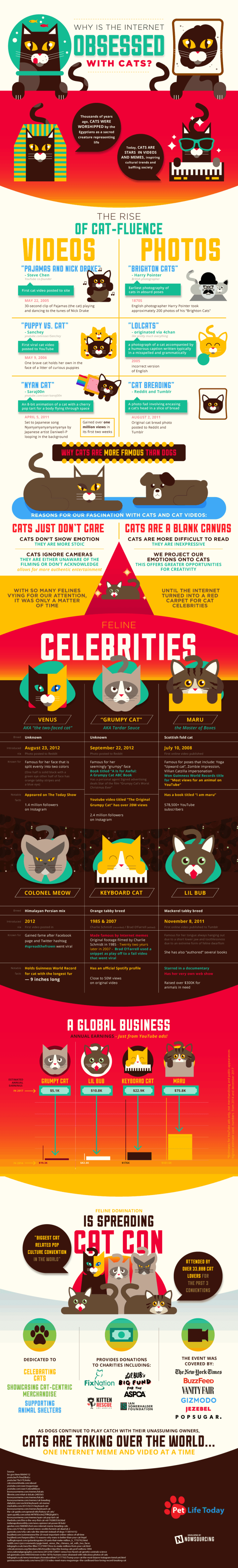 Here's Why The Internet Is So Obsessed With Cats [Infographic] 1