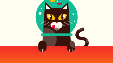 Photo of Here's Why The Internet Is So Obsessed With Cats [Infographic]