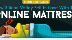 Why Did Silicon Valley Suddenly Get Obsessed With Mattresses? [Infographic] 13