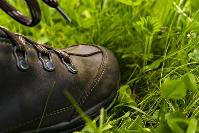 foot in grass