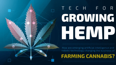 Photo of The Impact of Artificial Intelligence on the Hemp Industry