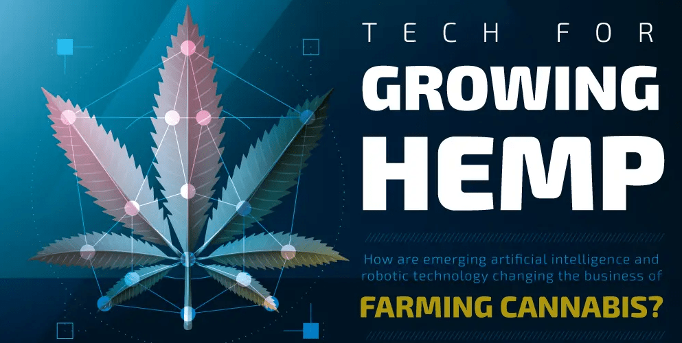 The Impact of Artificial Intelligence on the Hemp Industry 1