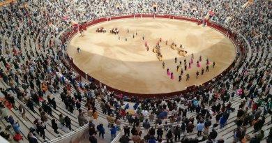 Los toros vuelven a lo grande a la plaza de Las Ventas