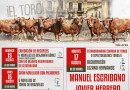 Cuatro festejos taurinos para la Feria de Almorox