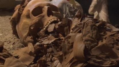 живую мумию