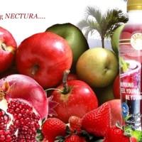 Mencegah Radang Ginjal Dengan Nectura Antioksidan
