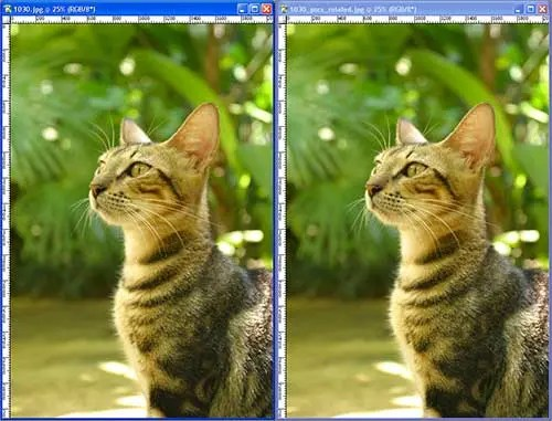 Short pixel image optimization has three options when compressing images