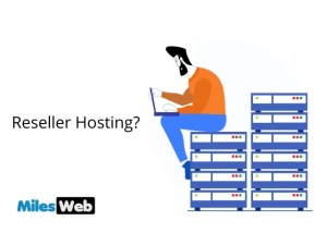 MilesWeb Reseller Hosting Review Why You Should Consider Them