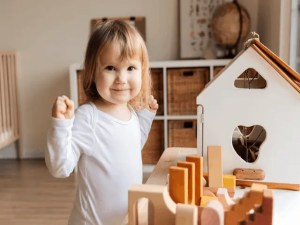 11 Best Toy Organizer That Keeps Your Inside Home Design