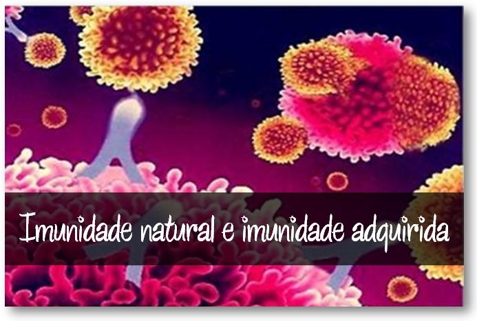 sistema imunitário natural e adaptativo