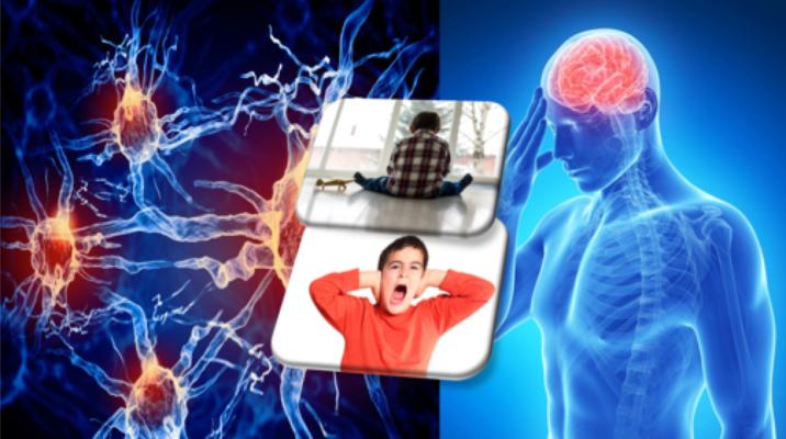 Inflamação cerebral e sintomas de autismo.