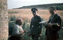 Почему Адольф Гитлер истреблял цыган