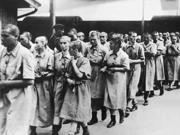 Бордели в концлагерях