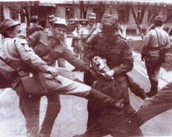 Вот кто получал выгоду от дедовщины в Советской армии