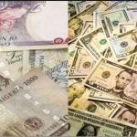 How Much Is Dollar To Naira Exchange Rate Today Black Market { Updated Daily }