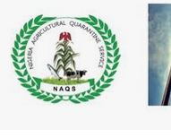 NAQS Recruitment 2020