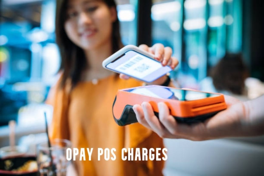 Opay POS Charges