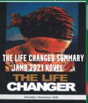 The Life Changer Summary Jamb 2021 Novel