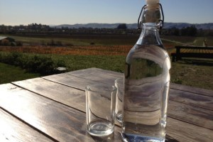 Long Term Solution for the California Town With No Water – Infrastructure Management Planning