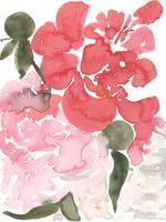 pink-peonies-3-thumb.75ff1448e25019e821fff167e277722e