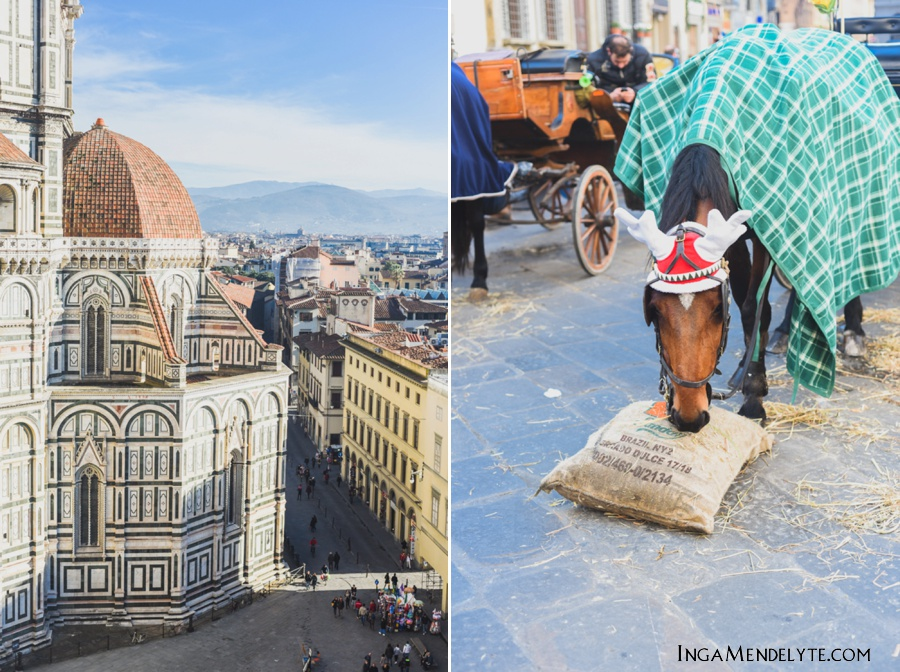 Florence Travel photography