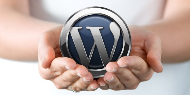 WordPress, el software por excelencia en Chile para tu blog