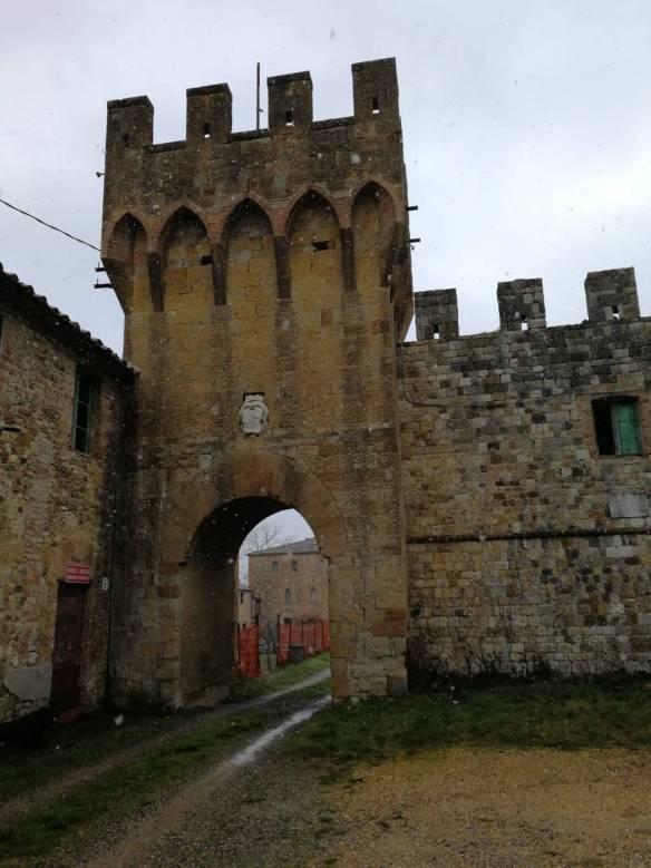 Porta Orvieto, Salci