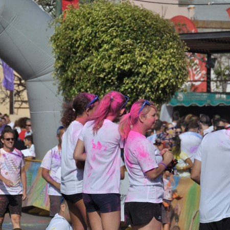 Ingenio-Colour-Festival_12