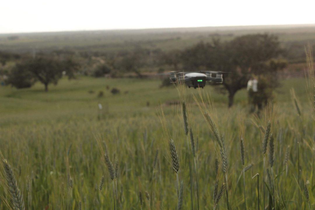 Dron para estudio y analisis en agricultura digital