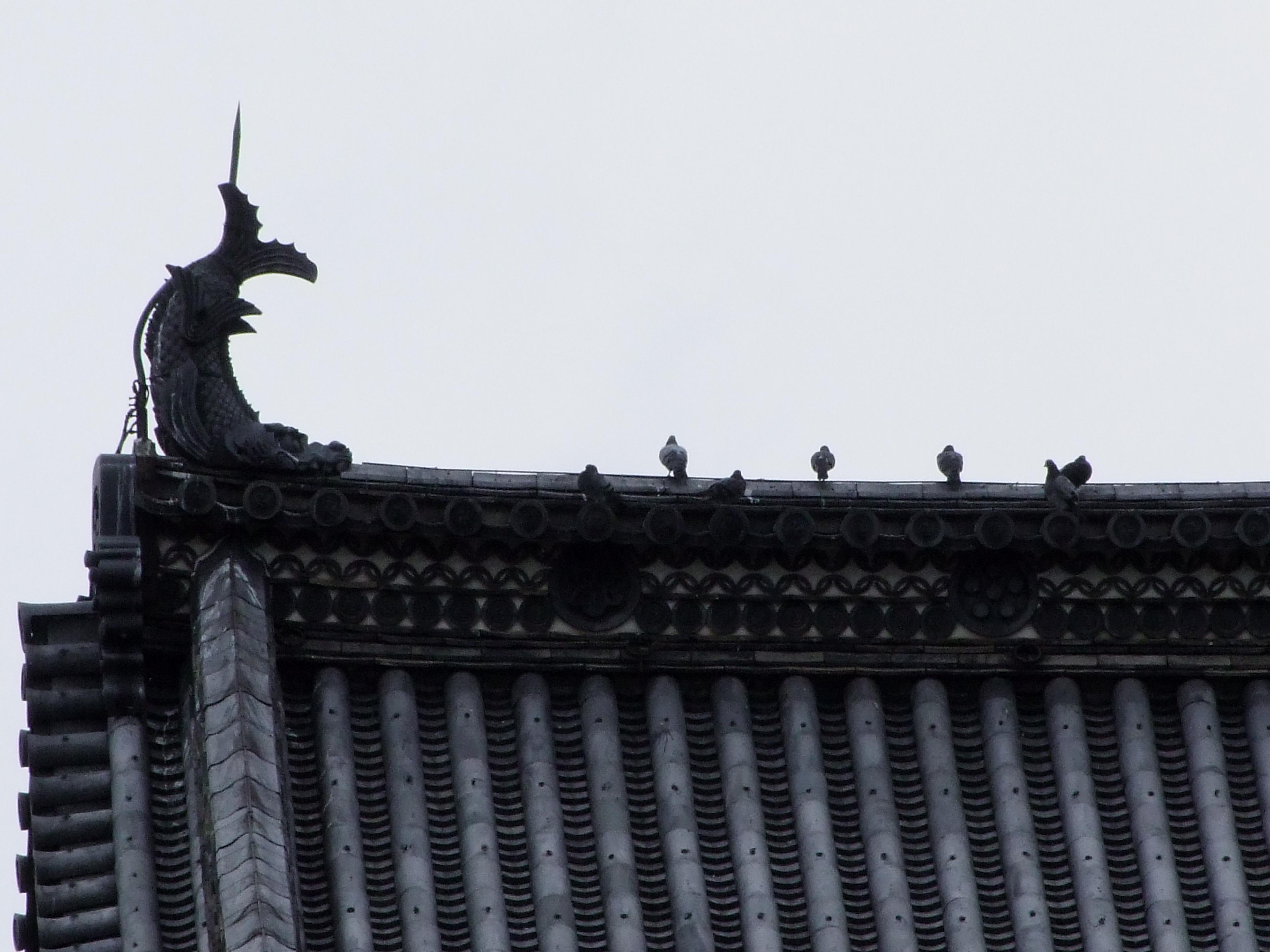 dettaglio del tetto