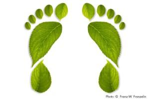Karbon ayakizi çevre çevreci ekoloji doğa