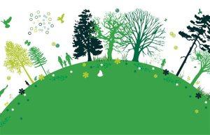 ekoloji doğa çevre yeşil çevreci