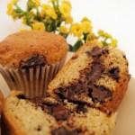 Muffins de Chocolate – Chocolate Muffins