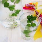 Como fazer água com sabor de hortelã {Mint Water}
