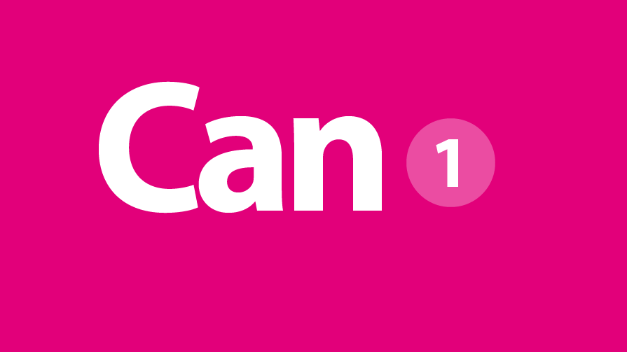 can-1-895×503