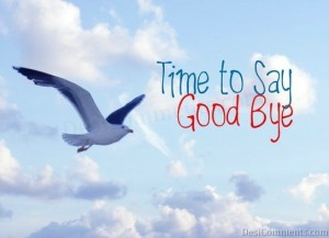 modos de dizer goodbye em ingles