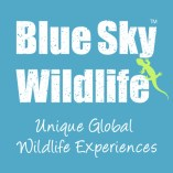 Blue Sky Wildlife_Logo_Square_CMYK_v6