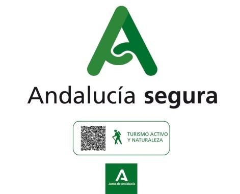 RESOLUCION JUNTA ANDALUCIA SEGURA STONK